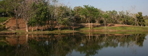 Mountain Creek Lodge (10)