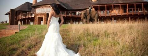 Askari Weddings (3)