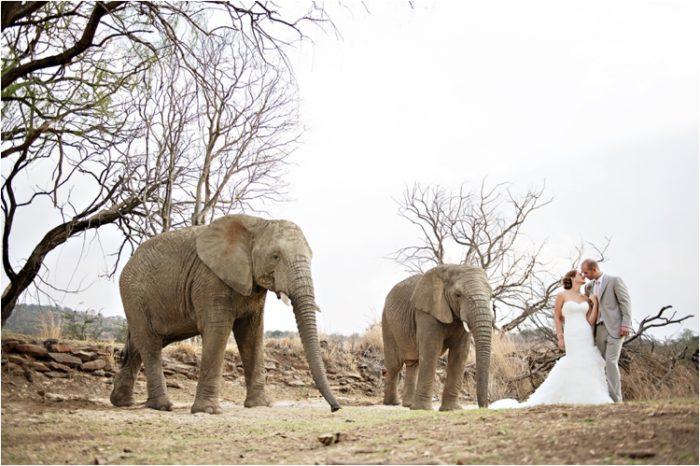 CM_askarilodge_weddings0049-700x466