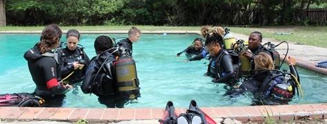Junglers Diving (11)