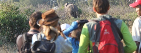 Junglers SA Culture_Heritage (9)
