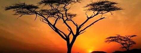 HeritageTours&Safaris (2)