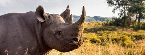 HeritageTours&Safaris (5)