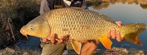 Lanseria_Fishing (1)