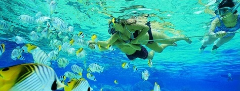 SnorkelingHeritageTours (1)