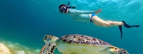 SnorkelingHeritageTours (2)
