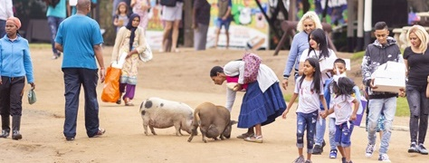 Flag Animal Farm (7)