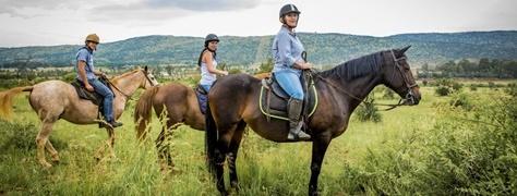 Horse & Trails (12)