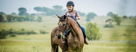 Horse & Trails (13)