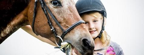 Horse & Trails (17)