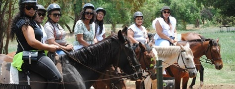 Horse & Trails (6)