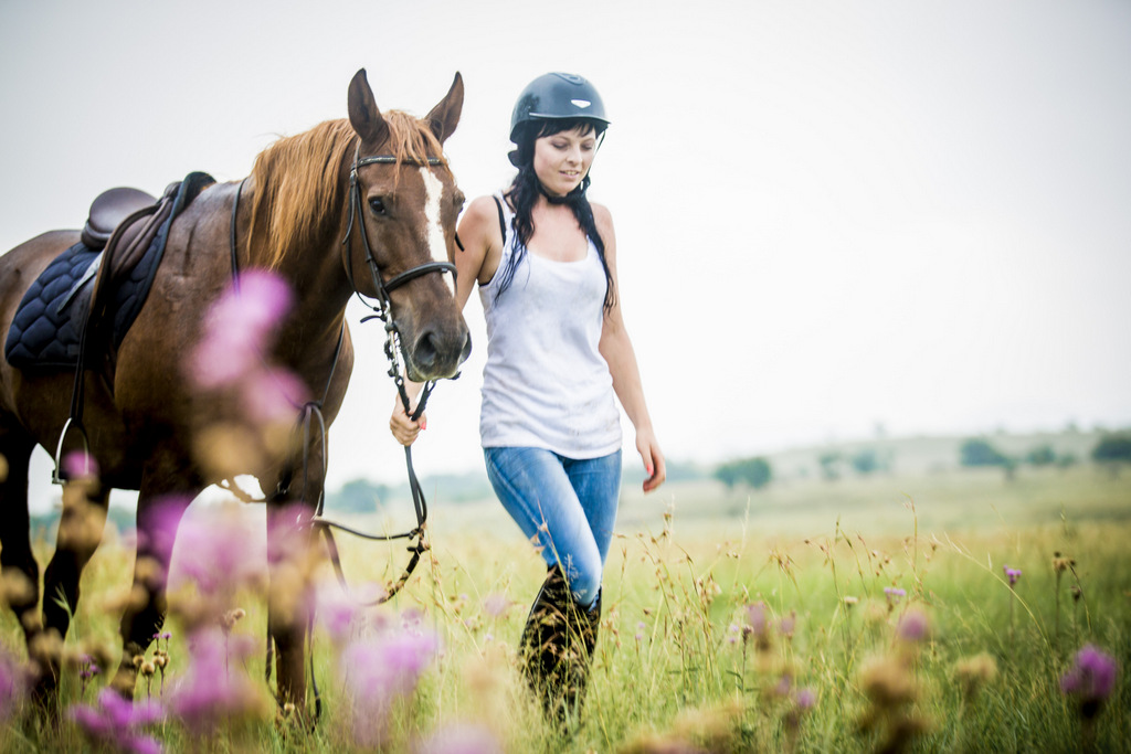 Horse & Trails Unlimited