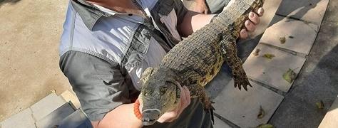 Crocodile Creek Ballito (9)